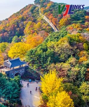 4N_Seoul Mùa Thu Hàn Quốc 2018
